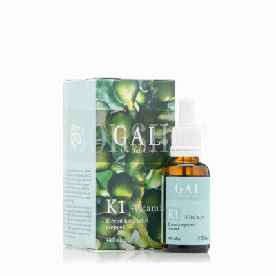 GAL K1-vitamin, 480 adag